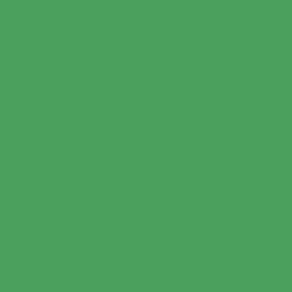 Colorama хартиен фон 2.72 x 11 м - Chromagreen