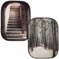 Сгъваем фон Perspective Collapsible 1.5x2.1m Stone Steps/Winter Trees